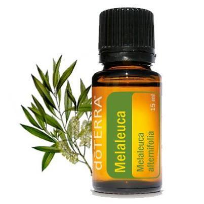 doterra-melaleuca-essential-oil.jpg
